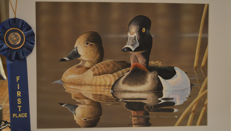 DUCK-STAMP